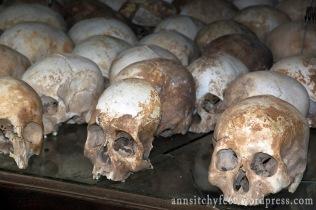 Czaszki zamordowanych na Polach Śmierci